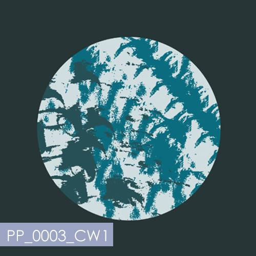 fabric printing_fabric design_digital fabric printing_placement print_moon fabric_fabric for cushions_cushion print_PP_0003_CW