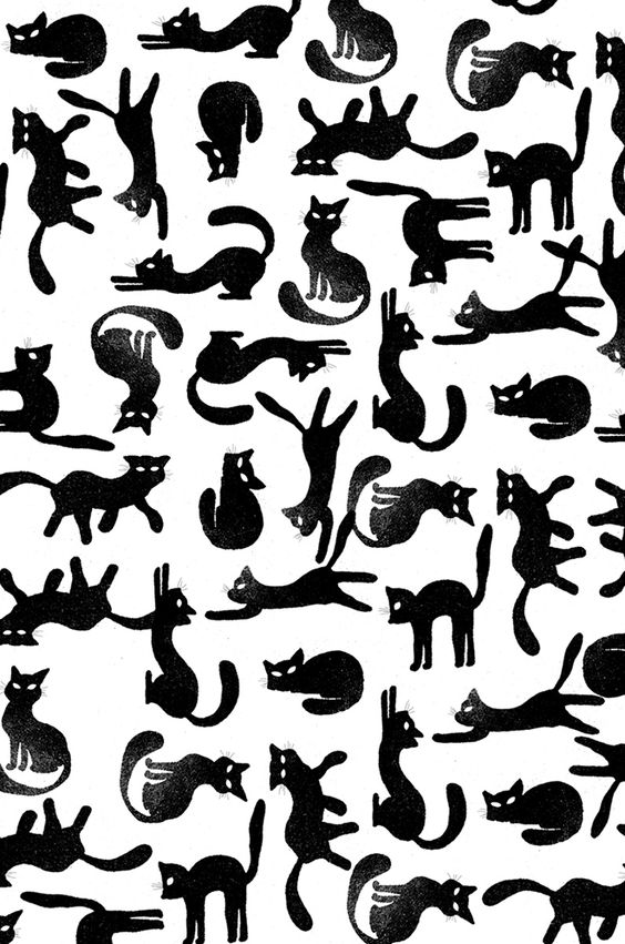 5 prints for people who love cats
